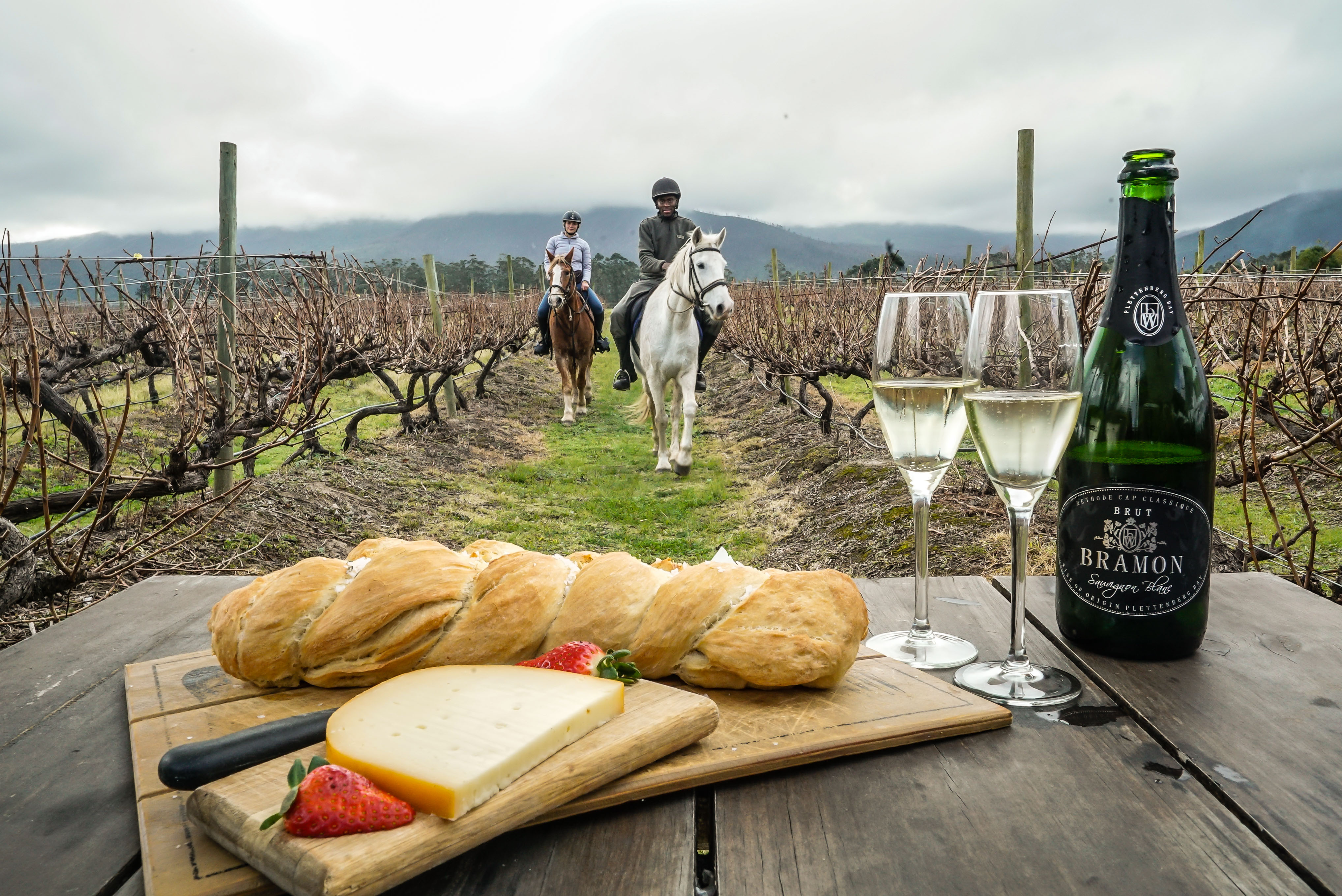 https://www.plettenbergbay.com/userfiles/images/Hog-Hollow-Horse-Trails-Wine-Trail.jpg
